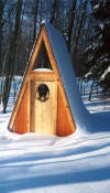 A-frame shed with beautiful hand-carved door